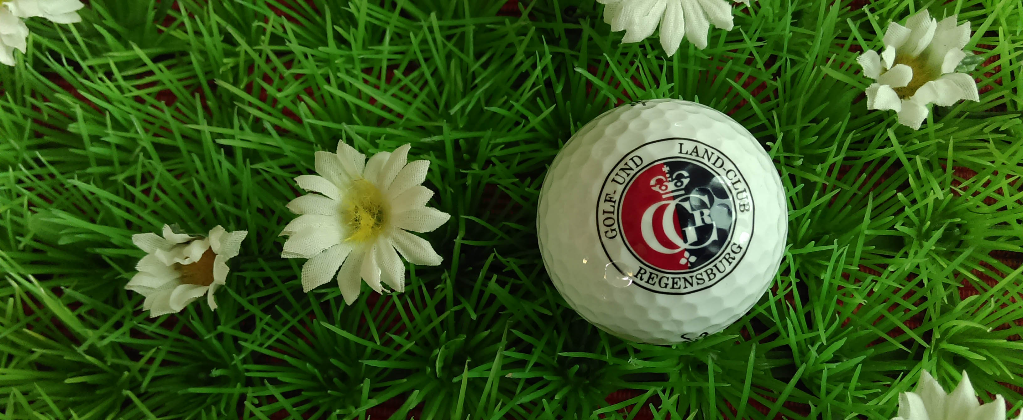 Bild commov.de | Artikel Golf-Tagebuch: Thiergarten einmal anders...