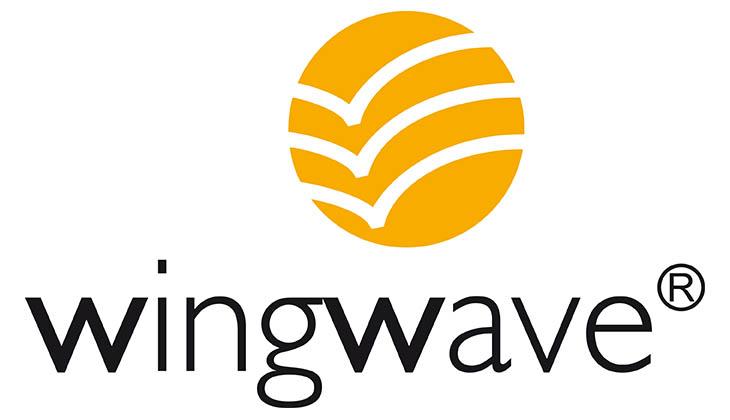 Bild wingwave® | Artikel wingwave® und Sport Mental Training