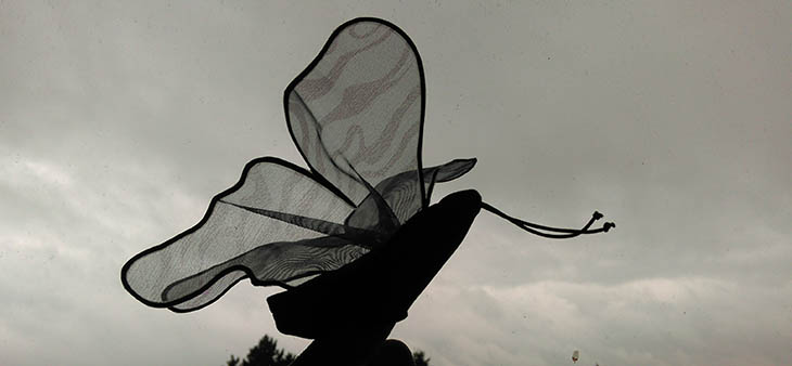 Bild commov.de | Artikel Bewusst oder unterbewusst mit wingwave®