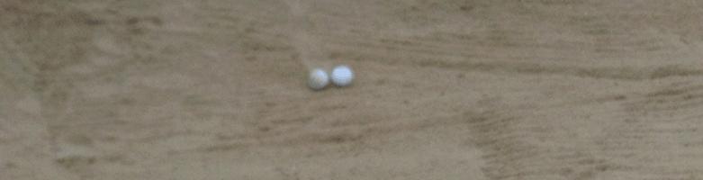 Bild commov.de | Artikel Golf-Tagebuch: Danke nach Hilzhofen